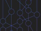 IBM and Tata join DLT platform Hedera Hashgraph's governing council