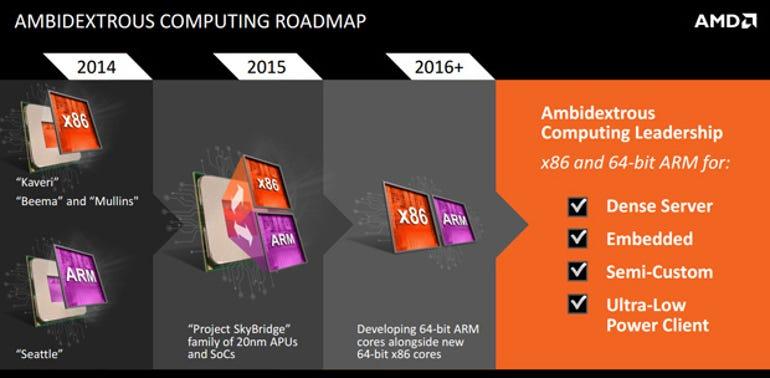 AMD-Ambidextrous-Roadmap