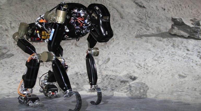 Rise of the robo ape