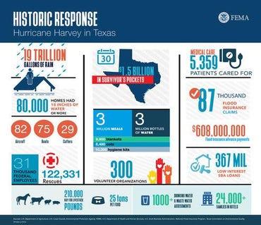 infographic30dayharveysmall.jpg