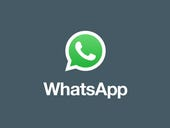 WhatsApp launches Android app for business accounts
