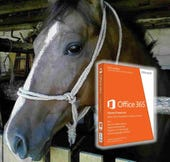 Horse with Office