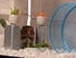 17. Sony unveils gadgets for your pets