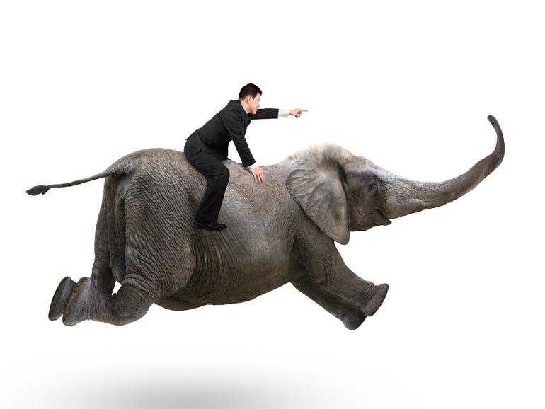 go-elephant-go.jpg