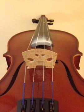music-viola-photo-by-joe-mckendrick.jpg