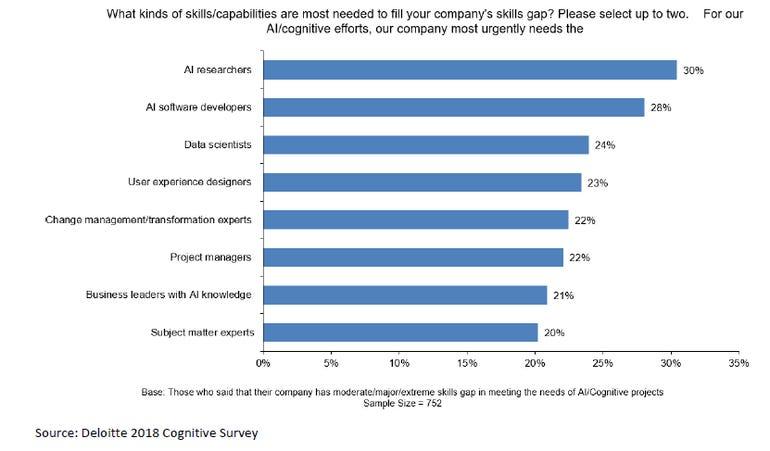 ai-2018-deloitte-survey-skills.png