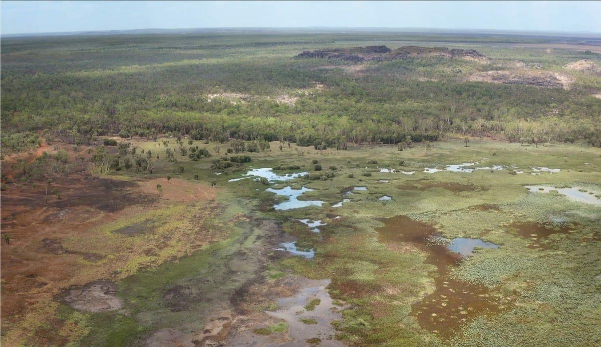 kakadu-healthy-country-microsoft-drone.png