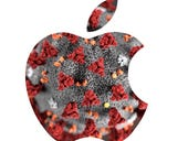 iOS 14 points to new iPhones and iPads - but will Apple release them under the cloud of COVID-19 coronavirus pandemic?