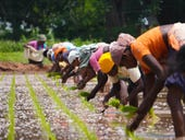 Why are Indian farmers so infuriated with Reliance's agritech plans?