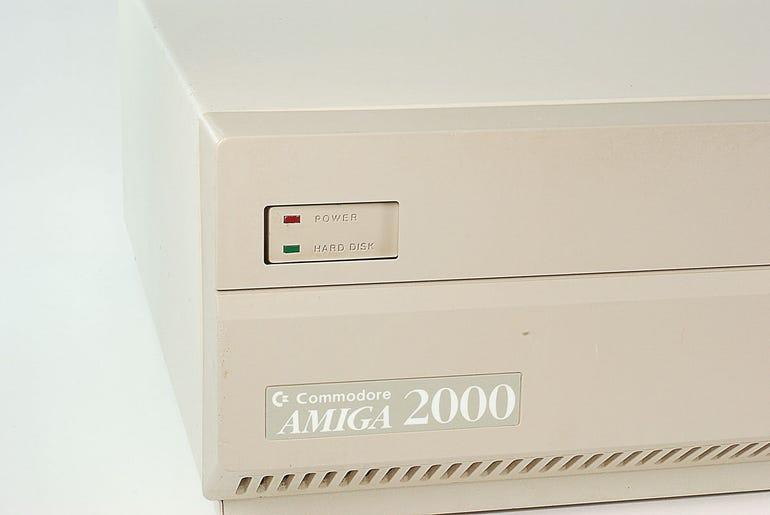 6200192.jpg
