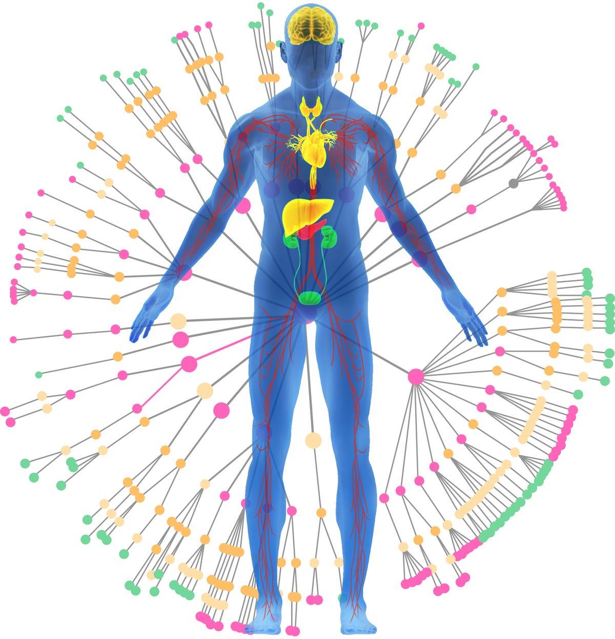 twin-health-2021-whole-body-digital-twin.png