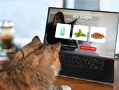 How a pet subscription startup is outfoxing giants like Chewy and Amazon
