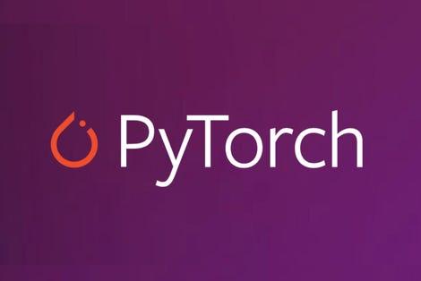 pytorch-crop-layout-for-twitter.jpg