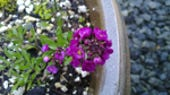 Image Gallery: Close up with the Nokia N9