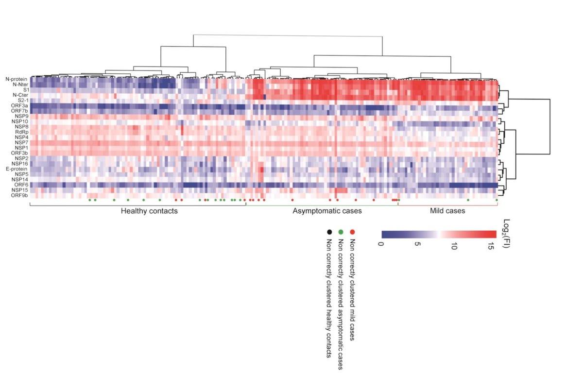 tongji-igg-antibody-response-2020.jpg
