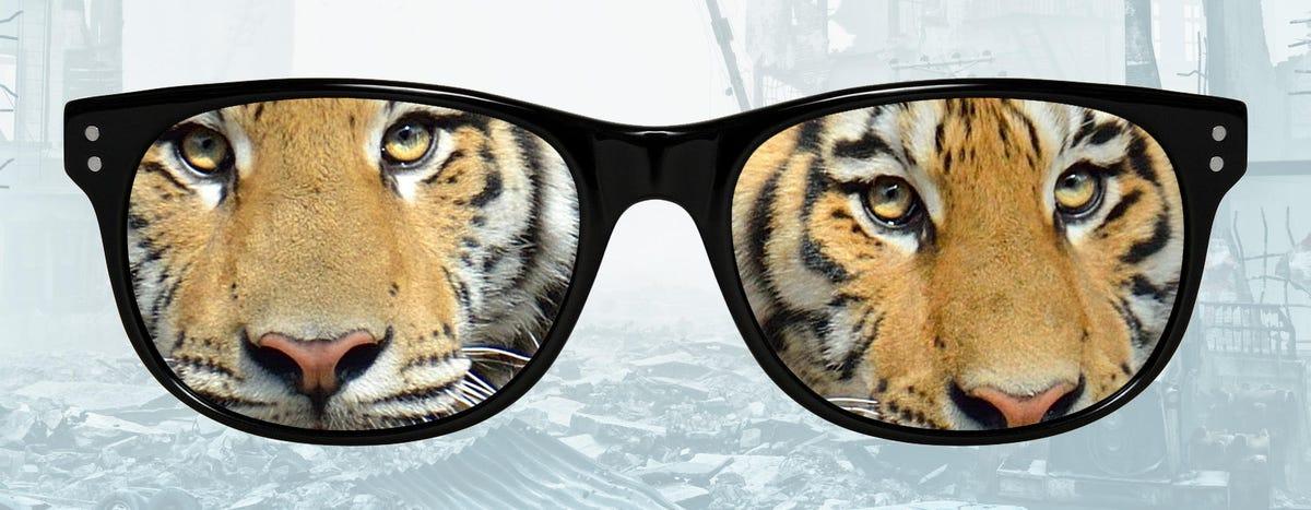 glasses-tiger2.jpg