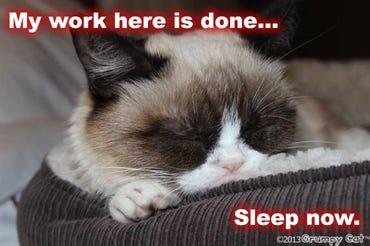 Grumpy Cat - Sleeping