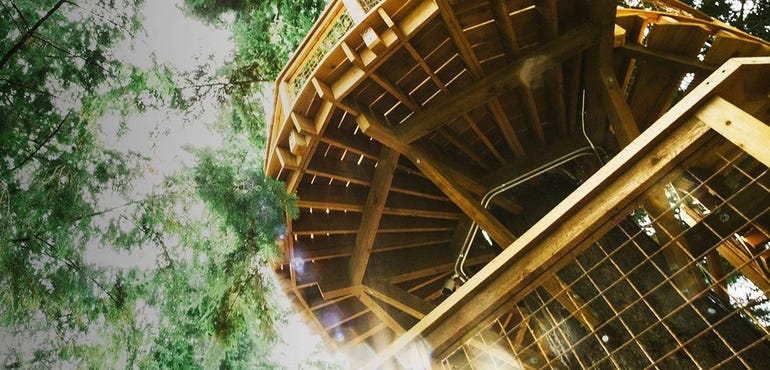treehouse-microsoft.jpg
