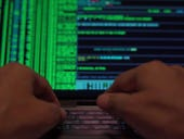 Cybersecurity: Disrupting the world's most dangerous malware botnet