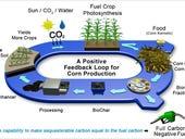 Google testing 'carbon-negative' biofuel