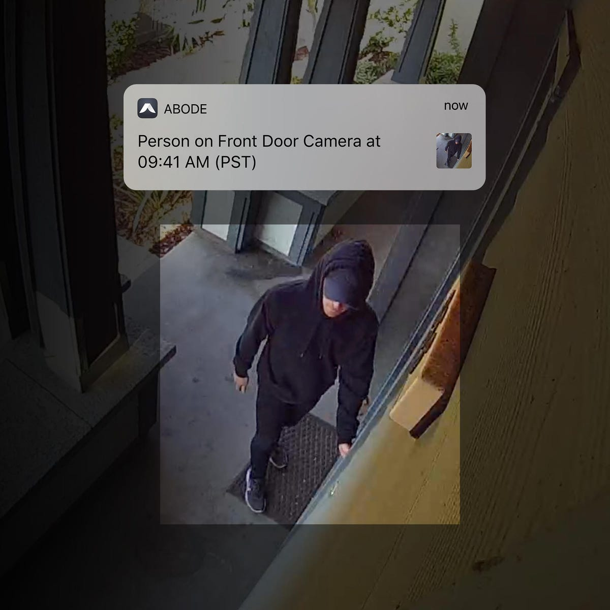 abode-cam-2-person-detection.jpg