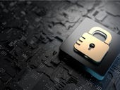 91% of IT teams have felt 'forced' to trade security for business operations