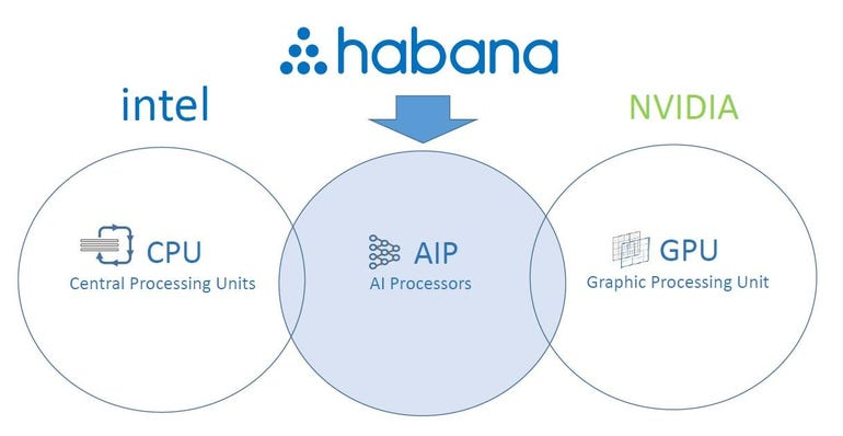 Habana build specialized AI chips