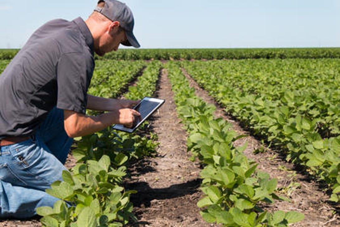 farmer-with-tablet.jpg