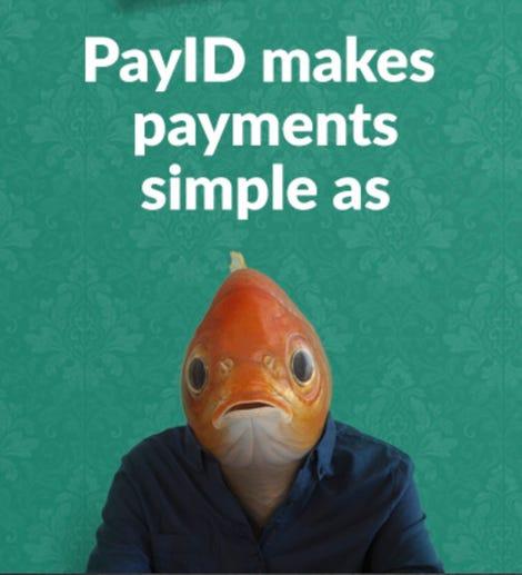 payid-npp.jpg