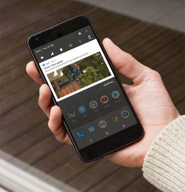 nest-iq-outdoor-app.jpg