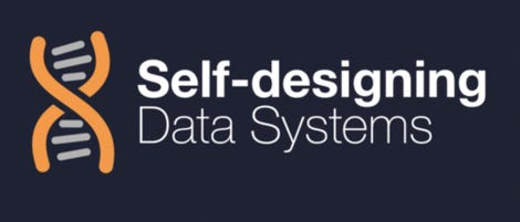 selfdesigningdatasystems.jpg