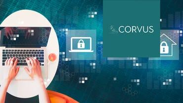 best-cyber-insurance-corvus-review.png