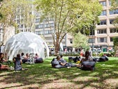 Gallery: Co-working in the park