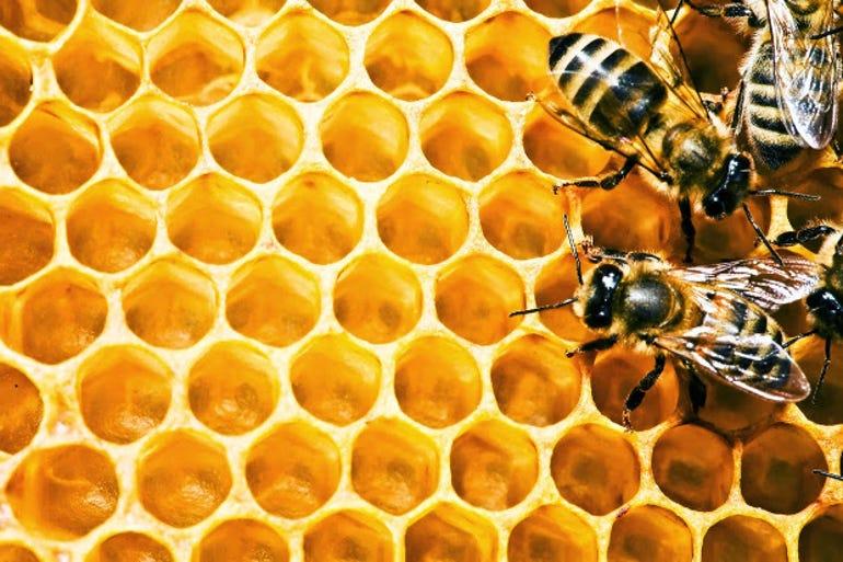 Docker-honeycomb