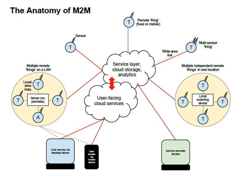 m2m-anatomy