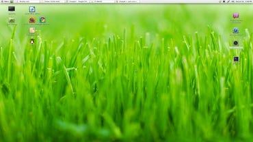 My top five Linux desktop distributions