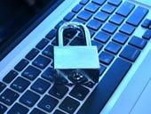 Bug, joke, secret code - or just spam clogging up the web?