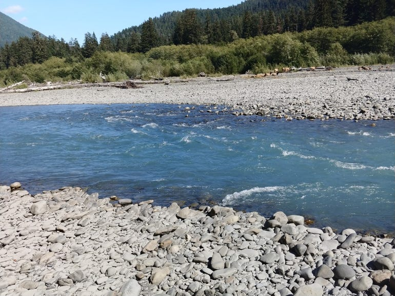 Another shot of the Hoh River
