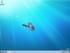 40152669-4-windows7-homescreen-custom.png