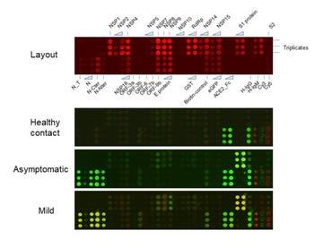 tongji-proteome-array-for-asymptomatic-2020.jpg