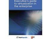 Executive's guide to virtualization in the enterprise (free ebook)