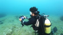 The Internet of Underwater Things: How researchers are mimicking whales to network the seas