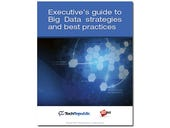 Executive's guide to Big Data strategies and best practices (free ebook)