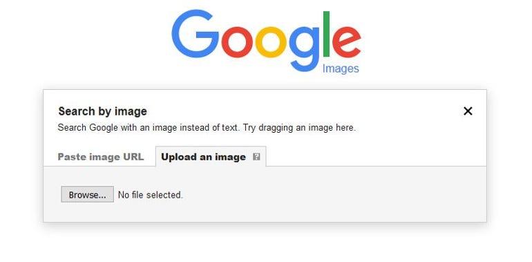 Google reverse image search box
