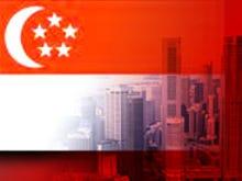 Singapore must look beyond online falsehood laws as elections loom