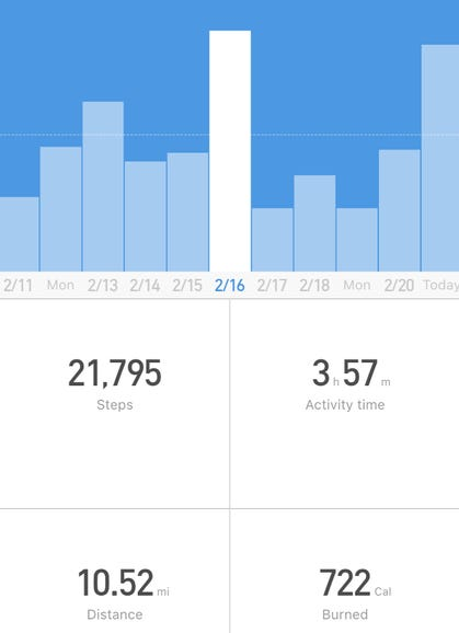 Step tracking history