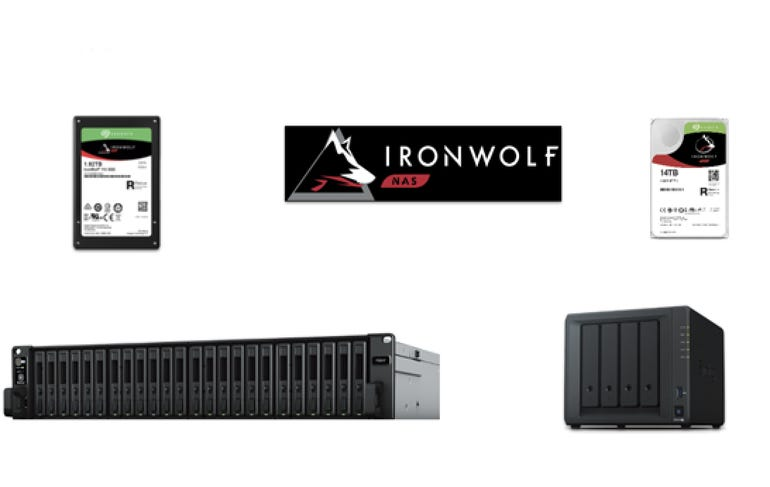 IronWolf 110 SATA SSD